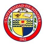 Logotipo USON